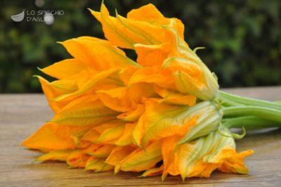 fiorizucca