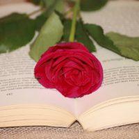 libro rose