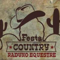 Festa Country copia