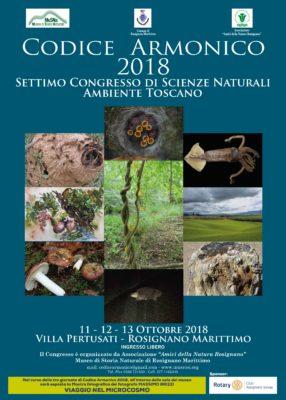MUSEO Codice Armonico 2018 Qua