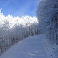 pista amiata neve