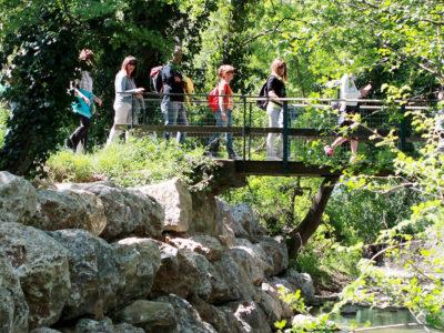escursioni_ponte_tenuta_di_paganico1