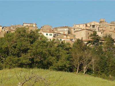 montelaterone2