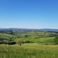 cinigiano panorama